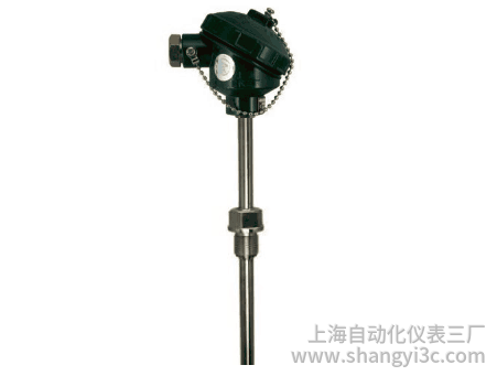 WZP-231固定螺纹防水式热电阻